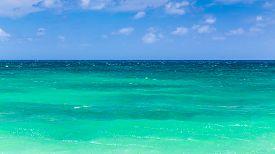 Green Hawaiian sea
