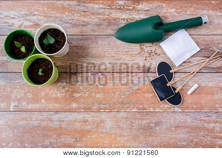 gardening and planting concept - close up of seedlings, garden trowel, seeds and nameplates on table