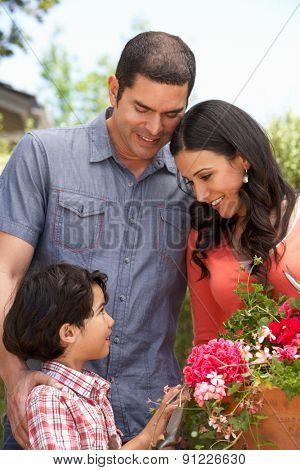 Hispanic Family Working In Garden Tidying Pots