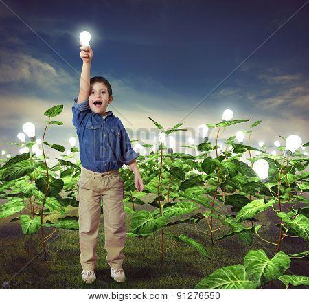 Lightbulb in a ideas field