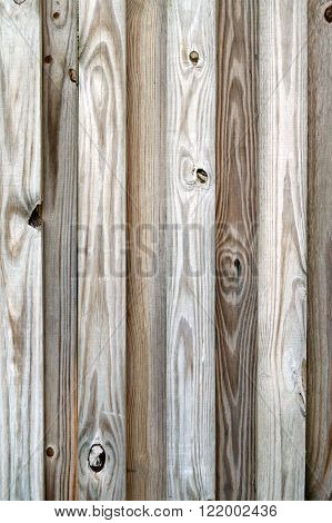Detail Of Privacy Fence