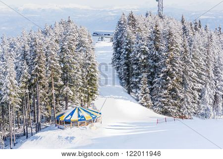 Winter Landscape Mountain Forest Snow
