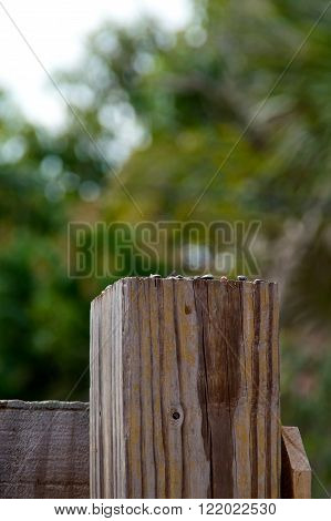 Looking towards the top of a 4 by 4 wooden fence post.