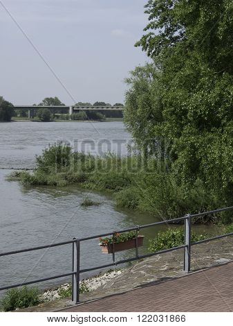 the riiver rhine near the City of rees