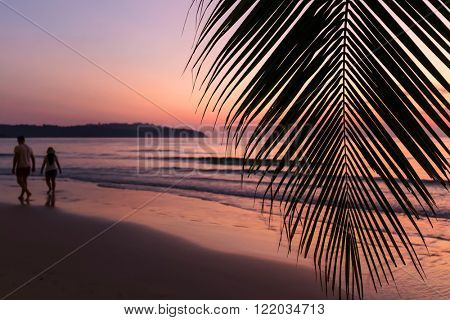 Tropical sunset over palm tree with couple silhouette walking on the sand at the khlong Chao beach in Ko Kood island, Thailand