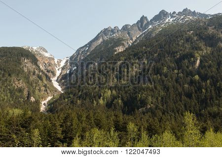 The mountains and forests near Skagway, Alaska