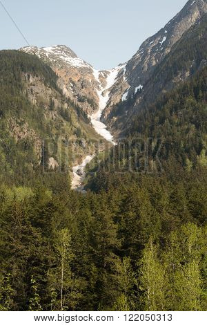 View of mountains and forests near Skagway, Alaska ** Note: Soft Focus at 100%, best at smaller sizes