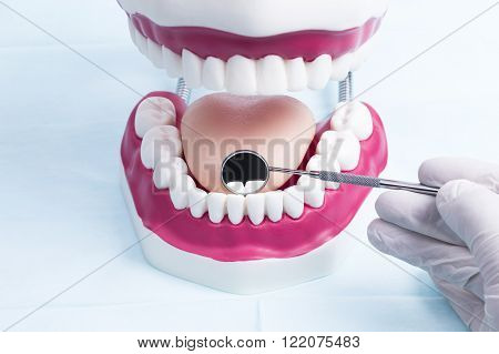 Image shows a dental jaw model with hand and tools