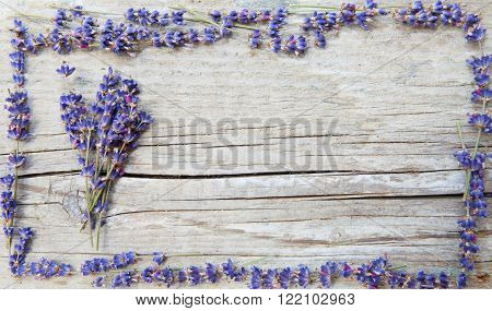 a frame made of lavender with lavender bunch