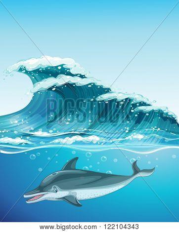 Dolphin swimming under the ocean illustration