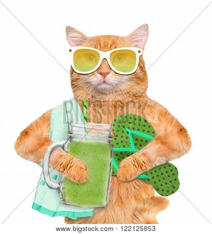 Cat holding smoothie in a jar mug old isolated on white.