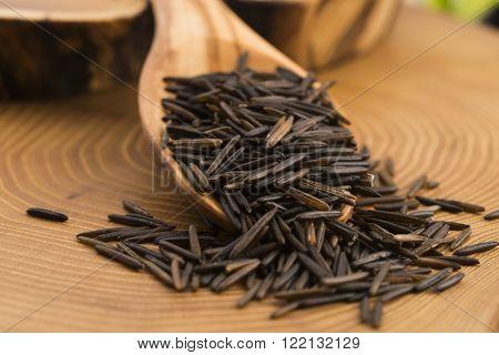 Wild Rice On Wooden Spooon