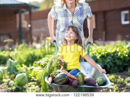 little child girl inside wheelbarrow with vegetables in the garden