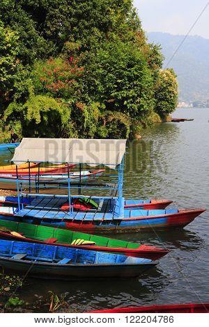 Rowboats At The Phewa Lake