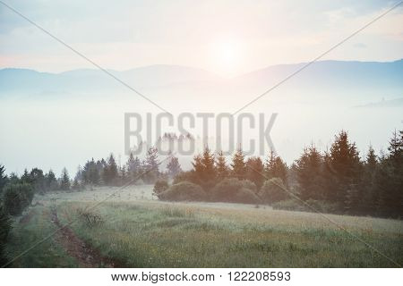 Gloomy morning with dramatic and picturesque scene. Location place: Carpathian, Ukraine, Europe. Artistic picture. Beauty world. Ð¡ross processed retro and vintage style. Instagram toning effect.