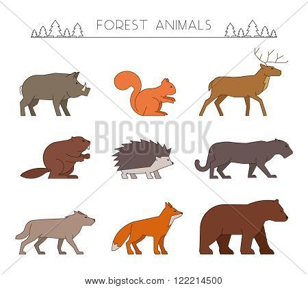 Outline set of forest animals. Linear silhouettes forest animals isolated on white. Line forest animals. Vector icons wild boar squirrel and deer. Outline silhouette beaver hedgehog and panther.