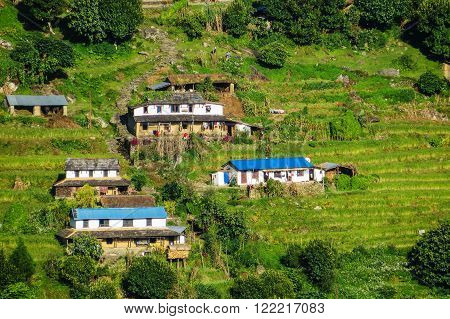 Shanty houses on a hill in Nepal, surrounded by grass and steps