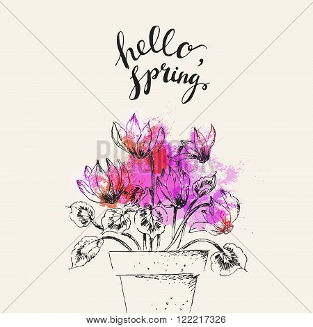 Hand drawn line art pot flower and hello spring lettering. Spring cyclamen ink drawing for easter decor garden backgrounds floral design.