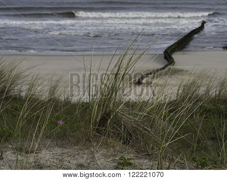 the german Island of wangerooge in frisia