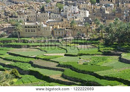 The old village Bilad Sayt, sultanate Oman