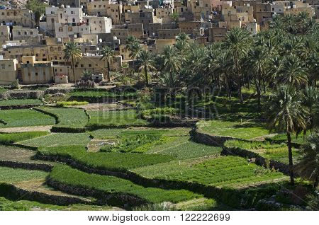 The old village Bilad Sayt sultanate Oman