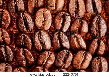 Closeup of group coffee beans lying on ground coffee. Macro of coffee beans. Can be also used as background. ** Note: Shallow depth of field