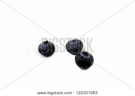 three blue berries on a white background