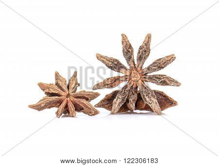 Anise Herb isolated on a white background.