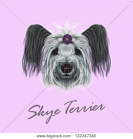 Cute face of dog on pink background.