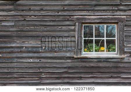 Window of old wooden log house on wall background. Flowers in the window.