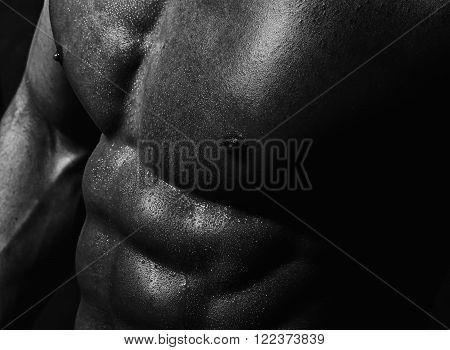 Closeup Of Male Delightful Torso