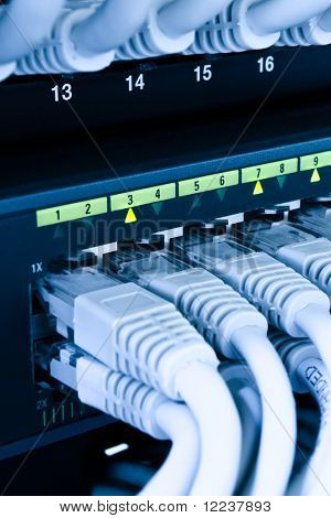 computer network cables connected to a switch and patch-panel