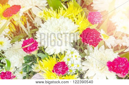 Bunch of flowers in flower market with sunlight