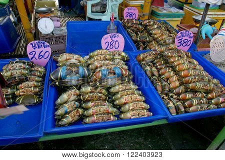 Live black crabs ready to be cooked in fresh market at Thailand. (Text in signs mean Black Crab or Serrated Mud Crab)