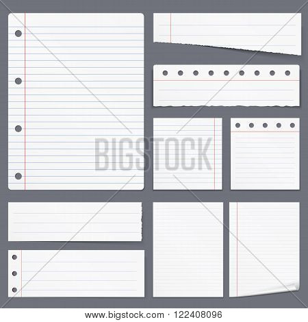 Blank white lined paper, notebook paper, torn paper, vector eps10 illustration