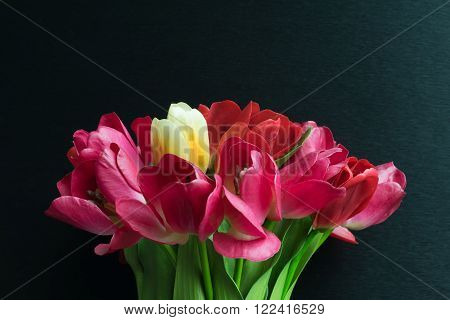 Beautiful tulips flower red color in black vase on black background