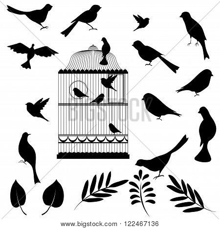 Vector illustration, of bird cage with birds and floral elements for your design