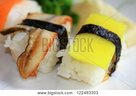 Various types of sushi fish and rice ** Note: Shallow depth of field