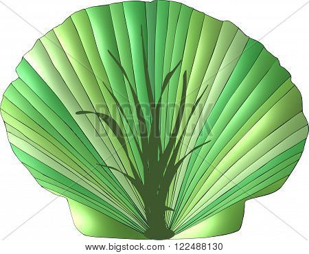 A scallop seashell decorated in the various shades of green and adorned with the image of a seaweed