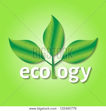 Ecological or environmental concept or logo. Green leaves on a tree with ecology white text on a green background.