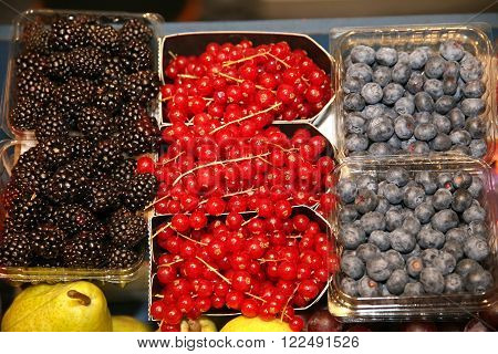 Set Of Freshly Picked Organic Fruits At Farmers Market