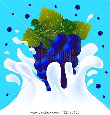 Blue Blackberry In Yoghurt