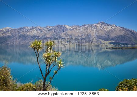 Along the shores of Lake Wakatipu New Zealand
