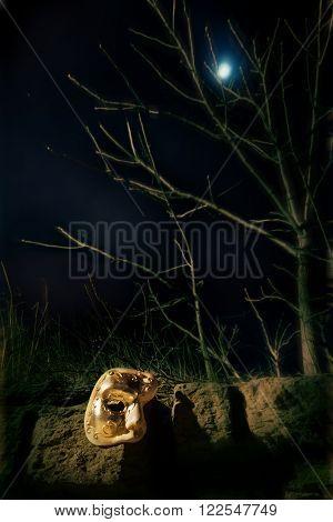 Vintage Mask at Night in Moonlight