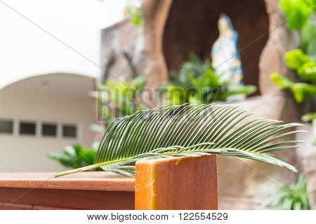 Closeup of palm leaf on pews with de-focused generic grotto with Mother Mary