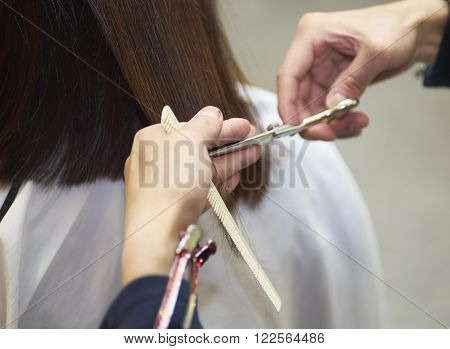 closeup of hairdresser do haircut in salon
