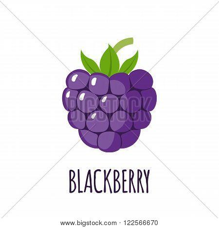Blackberry fruit in flat style. Blackberry fruit vector logo. Blackberry fruit icon. Isolated object. Natural food. Vector illustration. Blackberry fruit on white background