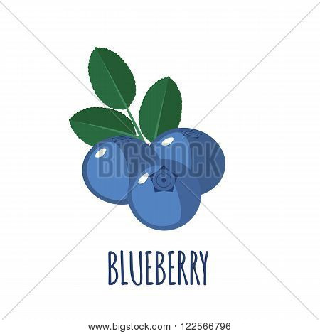Blueberry in flat style. Blueberry vector logo. Blueberry icon. Isolated object. Natural food. Vector illustration. Blueberry on white background
