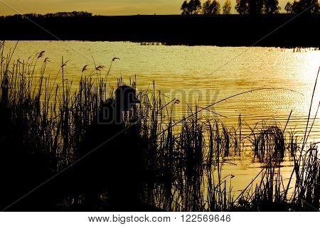 silhouette of a fisherman on the river at dusk