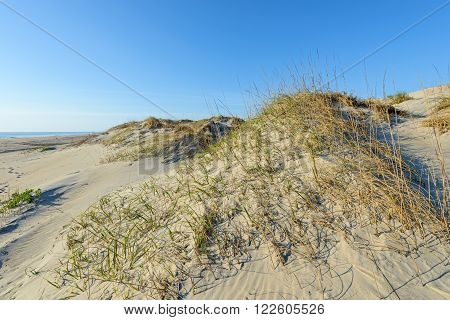 Sand Dunes and Beach in Early Morning Light  - Outer Banks of North Carolina